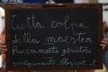 Palermo – Ma è davvero sempre colpa della maestra? Beh, per gli alunni vincitori del Macchia Nera Awards, come miglior sito letterario dell'anno, sì. Alunni un po' discoli, che non hanno voglia di seguire regole e tendenze, ma che fanno della controtendenza, motivo di vanto e di successo. Facebook come deperimento dei pensieri, il racconto