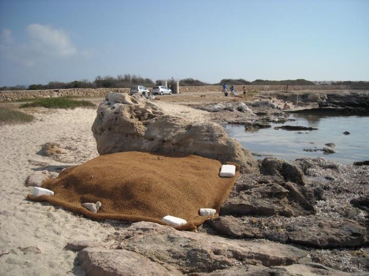 Gerin_collocazione bio-stuoie su roccia