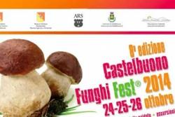 locandina funghi fest 2014 SEQUENZA