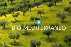Palermo – Il Cluster Biomediterraneo conta ormai le ore per l'inaugurazione del Primo maggio. In quest'atmosfera di entusiasmo che l'Assessorato Agricoltura, Sviluppo Rurale e Pesca Mediterranea della Regione Siciliana hanno presentato in anteprima alla stampa il Palinsesto degli eventi. All'incontro sono intervenuti: Antonino Caleca, Assessore Regionale dell'Agricoltura dello Sviluppo Ruralee della Pesca Mediterranea della Regione