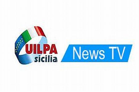 logo uilpa web URL IMMAGINE SOCIAL