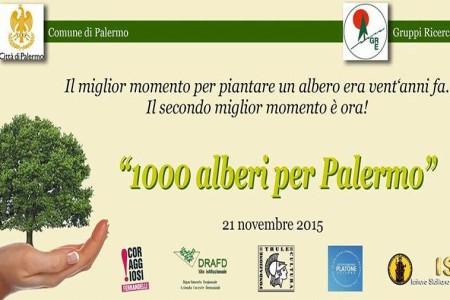 100 alberi a palermo URL IMMAGINE SOCIAL