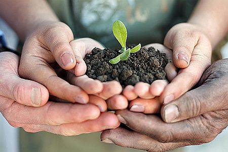 agricoltura sociale URL IMMAGINE SOCIAL
