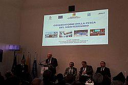 Osservatorio della Pesca del Mediterraneo: Economia Circolare, Crescita Blu, Accesso al Credito ed Internazionalizzazione