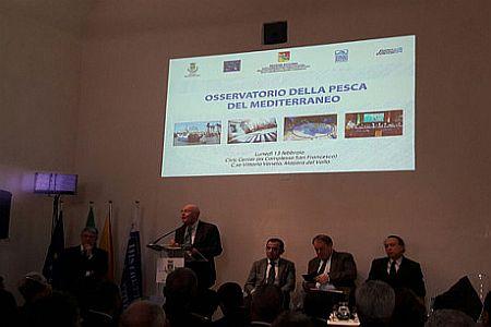 osservatorio pesca sicilia URL IMMAGINE SOCIAL