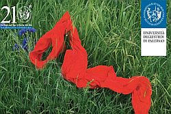 Nella ricorrenza del 25 novembre, Giornata Internazionale per l'eliminazione della violenza contro le donne – l'Università degli Studi di Palermo organizza, in collaborazione con la Polizia di Stato – Questura di Palermo, quattro giornate dedicate a questo tema con la finalità di sensibilizzare gli studenti su un problema, quello della violenza sulle donne, che investe
