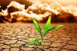 Fondi europei cambiamenti climatici e sicurezza territoriale al centro dell'incontro territoriale del Po Fesr Sicilia 2014-2020