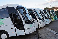 REGIONE: 520 NUOVI BUS, META' SARANNO ELETTRICI