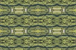La Art & Communication, associazione no profit da 13 anni in sostegno dell'arte contemporanea, per Rebuilt Sicilia, con Valorizzazioni Culturali presenta il progetto internazionale NATURE IS VIRAL – Paradise Lost (artists support the green world) a cura di Sveva Manfredi Zavaglia, presso Palazzo Scavuzzo-Trigona riaperto nel cuore di Palermo dopo 50 anni. La mostra celebra