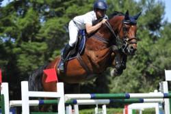 Salto ostacoli: la grande equitazione protagonista alla Società Ippica Siracusana
