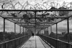I TALENTI della XX ediz. del CONCORSO NAZIONALE di FOTOGRAFIA premiati a Castelbuono